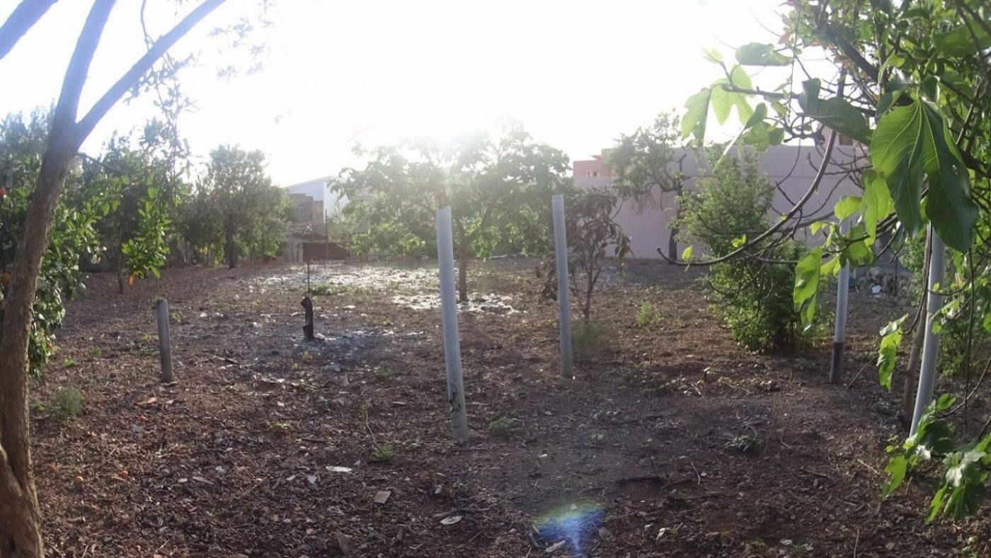 Solar andratx cerca del polideportivo - imagenInmueble1