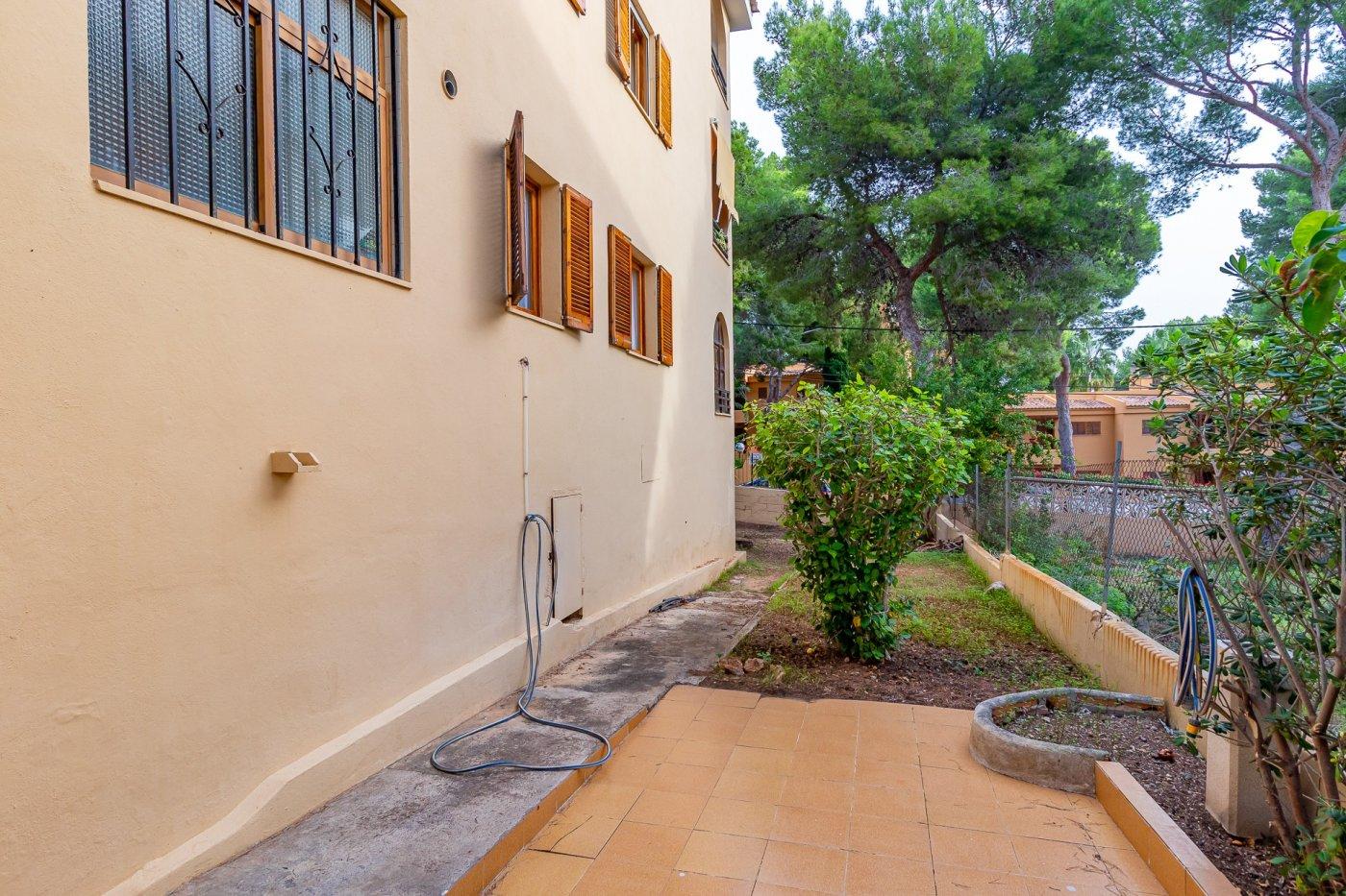 Sta ponsa!!!magnifica planta baja de 2 habitaciones con 70m2 de jardin y terraza! - imagenInmueble20