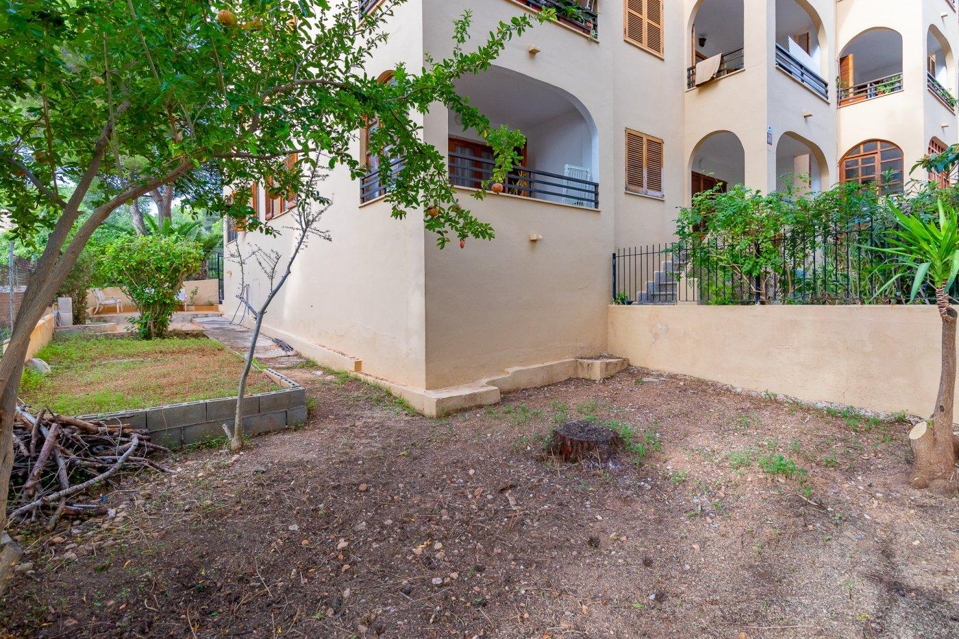 Sta ponsa!!!magnifica planta baja de 2 habitaciones con 70m2 de jardin y terraza! - imagenInmueble21