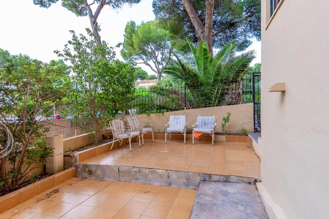 Sta ponsa!!!magnifica planta baja de 2 habitaciones con 70m2 de jardin y terraza! - imagenInmueble23