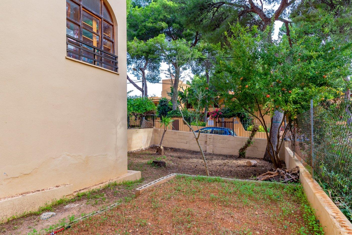 Sta ponsa!!!magnifica planta baja de 2 habitaciones con 70m2 de jardin y terraza! - imagenInmueble25