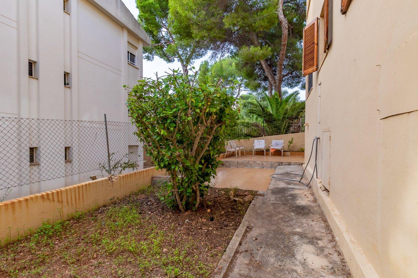 Sta ponsa!!!magnifica planta baja de 2 habitaciones con 70m2 de jardin y terraza! - imagenInmueble26