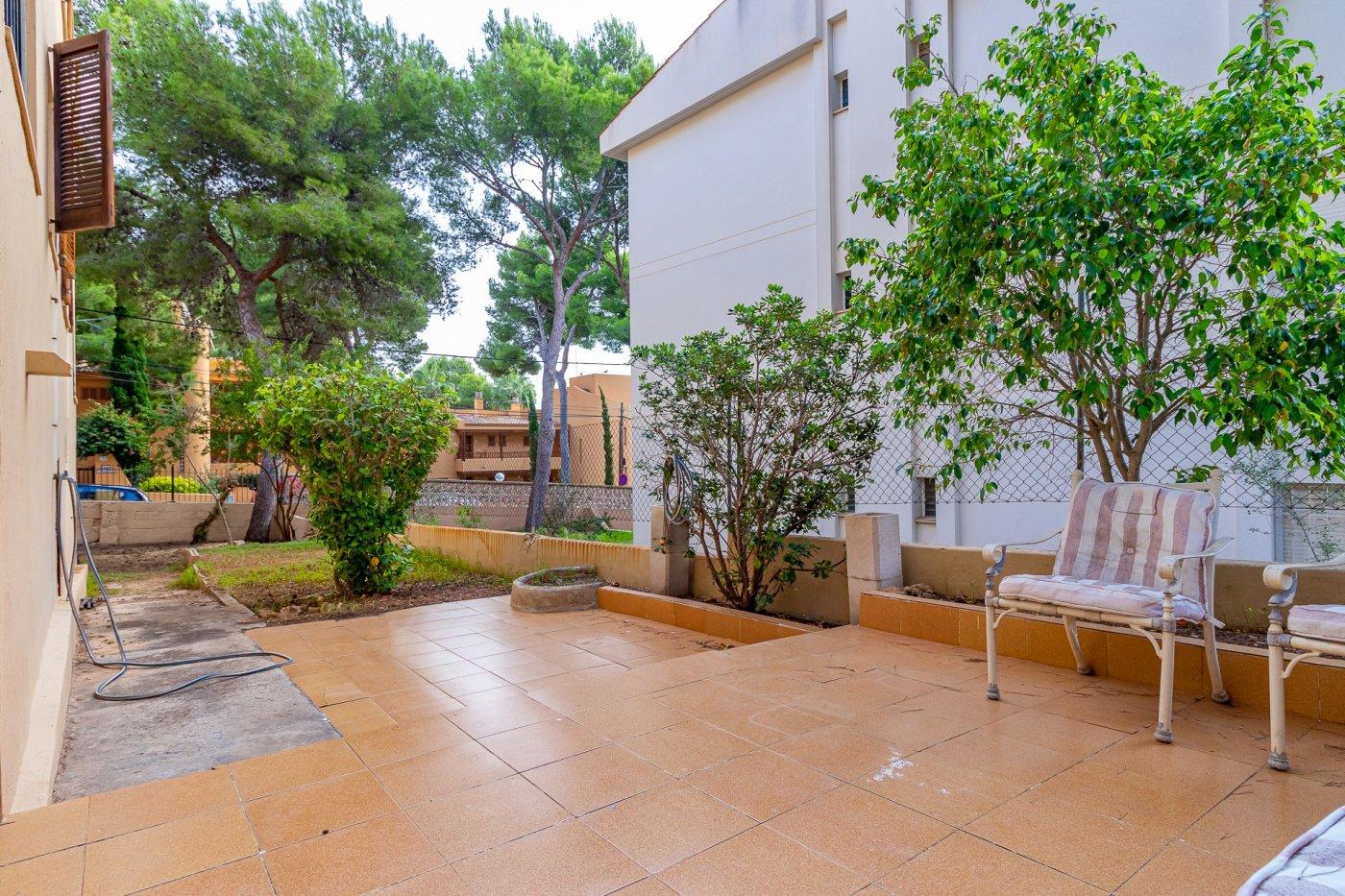 Sta ponsa!!!magnifica planta baja de 2 habitaciones con 70m2 de jardin y terraza! - imagenInmueble27