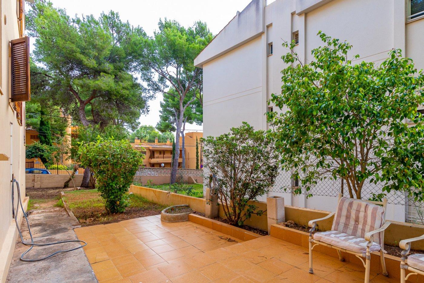Sta ponsa!!!magnifica planta baja de 2 habitaciones con 70m2 de jardin y terraza! - imagenInmueble28