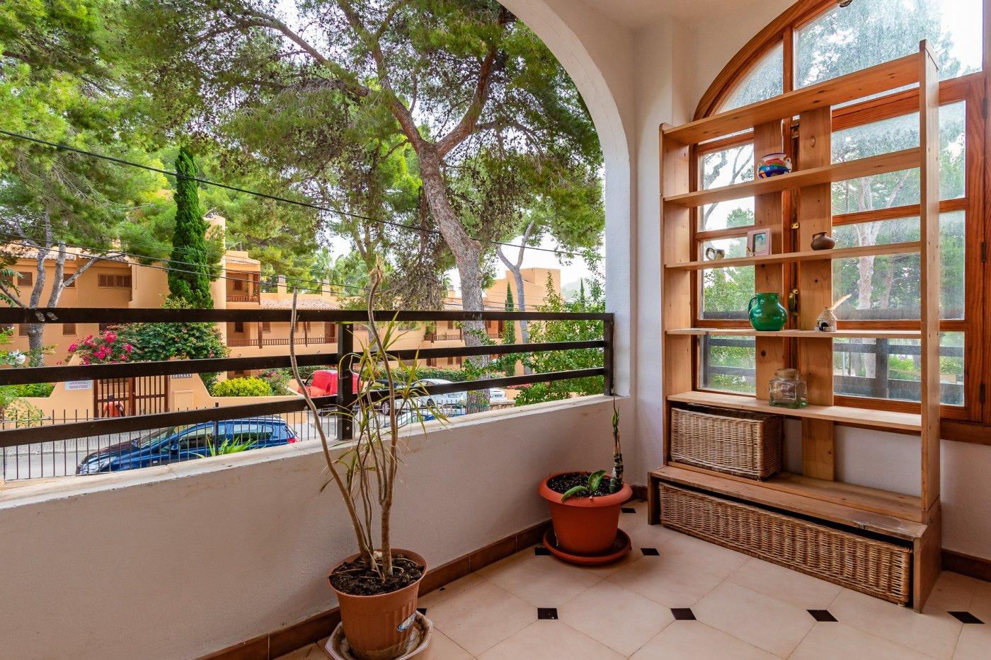 Sta ponsa!!!magnifica planta baja de 2 habitaciones con 70m2 de jardin y terraza! - imagenInmueble7
