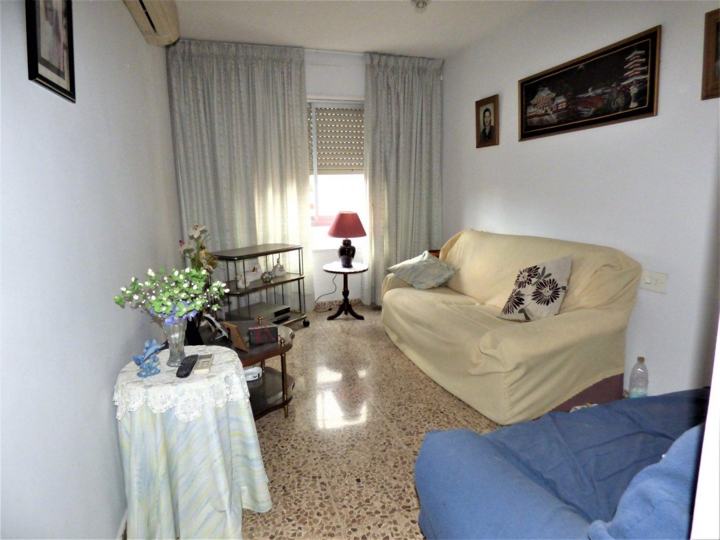 Amplio piso en son cotoner con garaje - imagenInmueble11