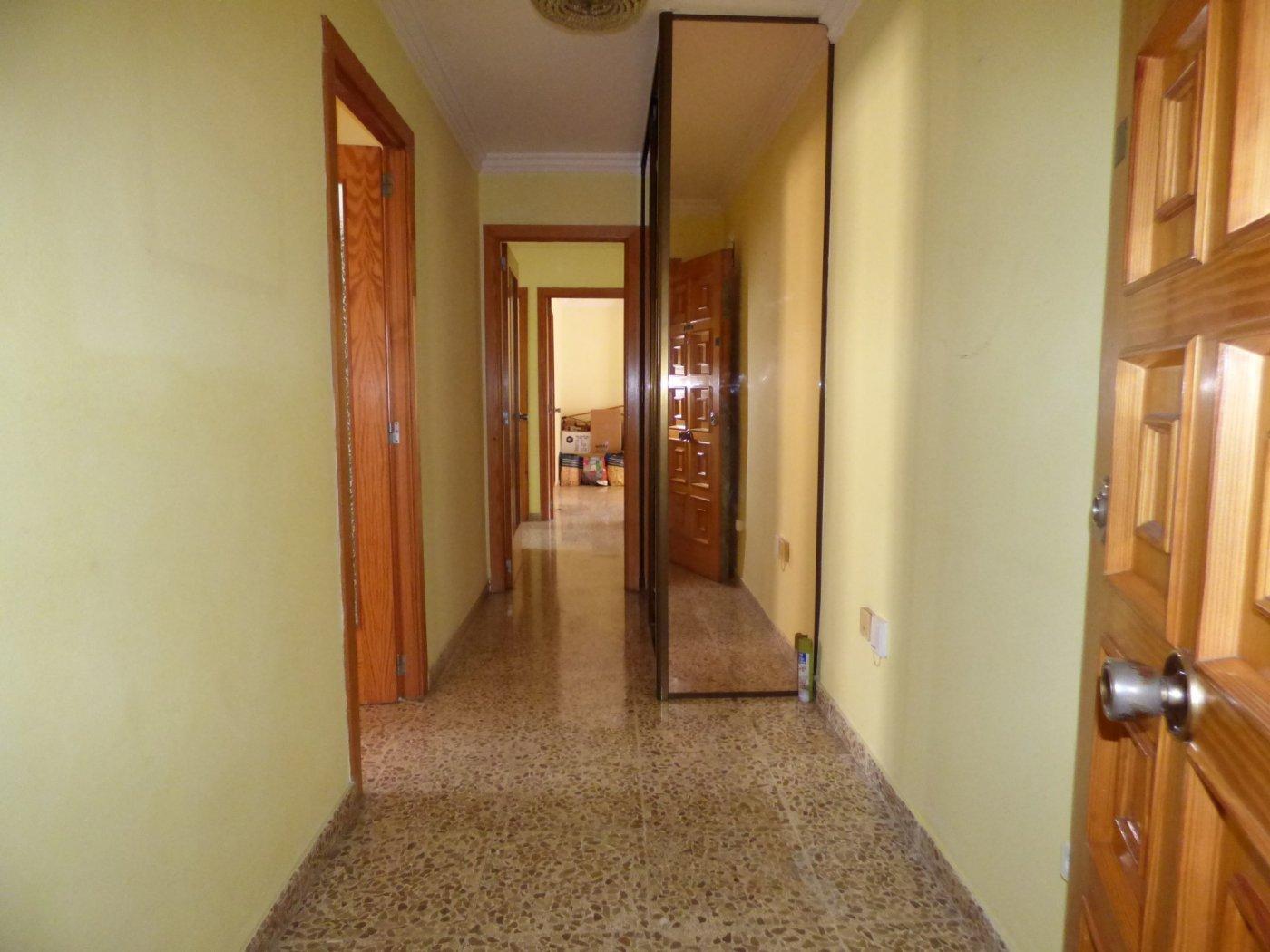 Amplio piso en son cotoner con garaje - imagenInmueble27