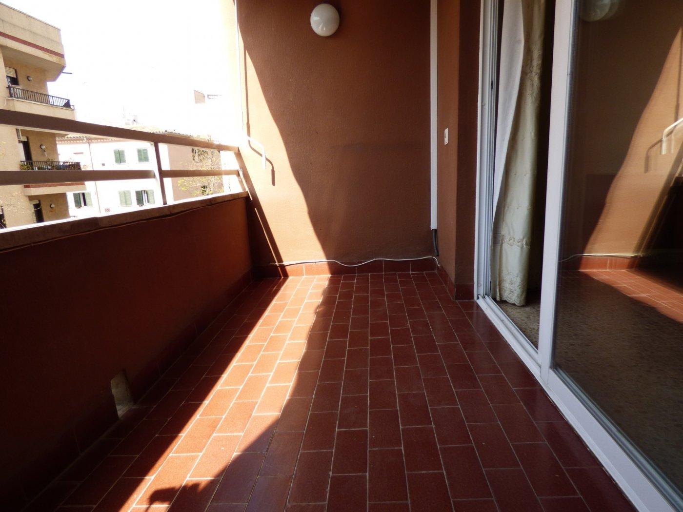 Amplio piso en son cotoner con garaje - imagenInmueble3
