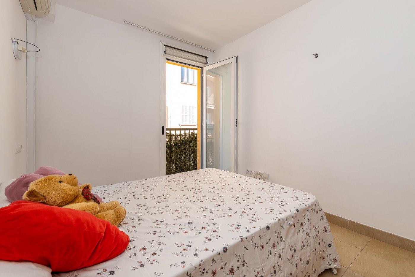 Son cotoner!!!piso de 2 dormitorios con ascensor en finca del aÑo 2006 - imagenInmueble14