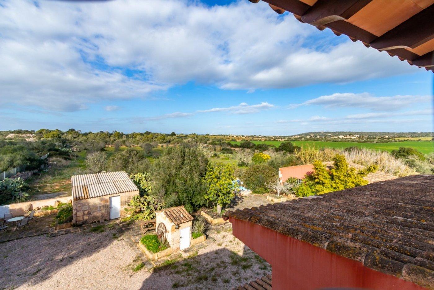 Magnifica villa en ses salines - can somni - ideal inversores turÍsticos - imagenInmueble29