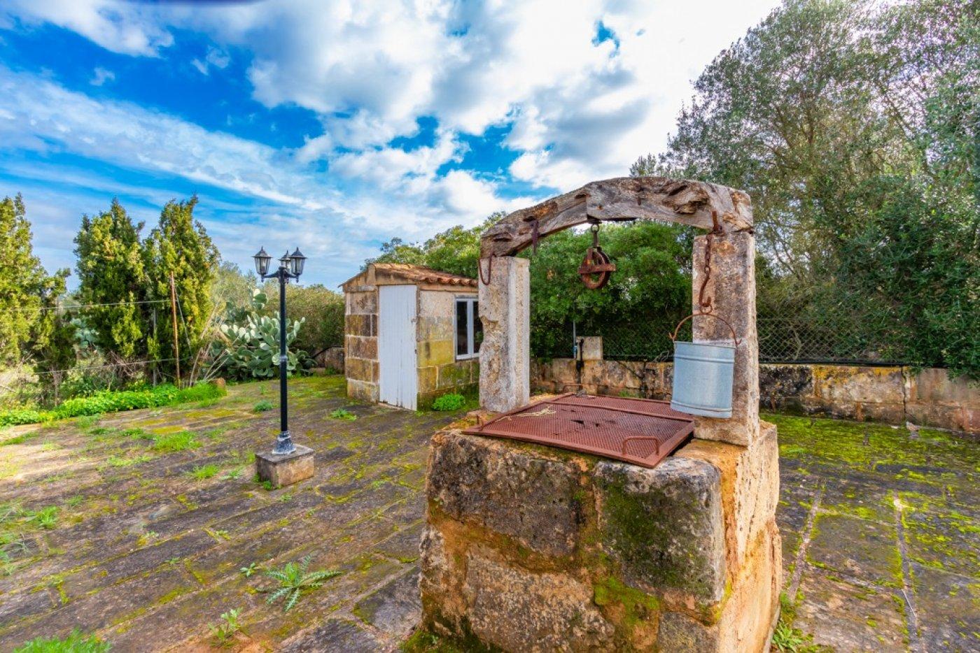 Magnifica villa en ses salines - can somni - ideal inversores turÍsticos - imagenInmueble4