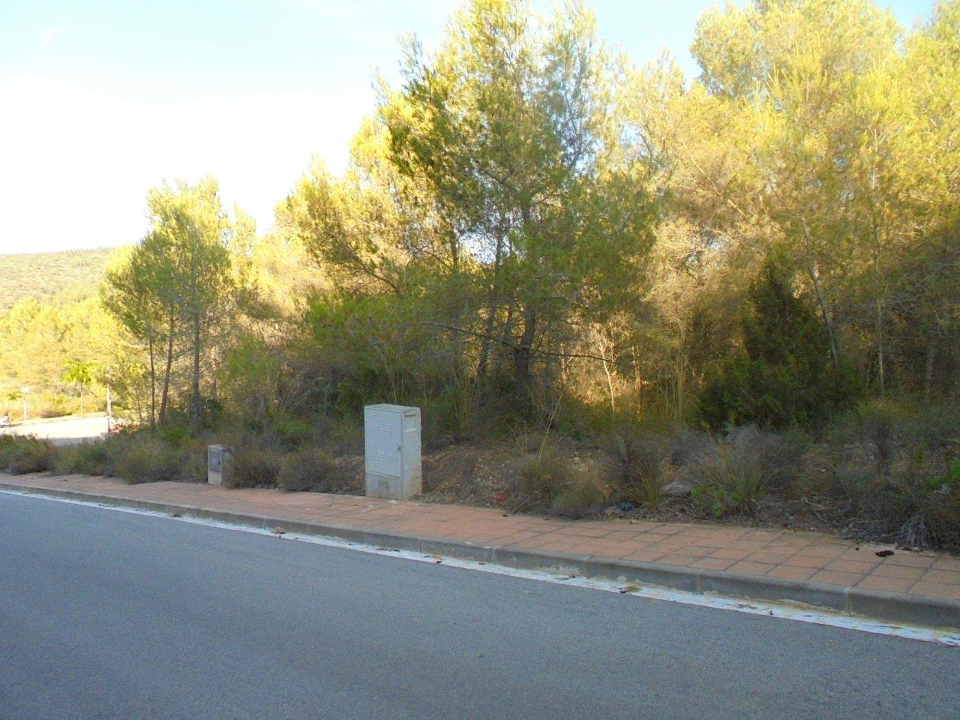 Land for sale in Mas Alba, Sant Pere de Ribes