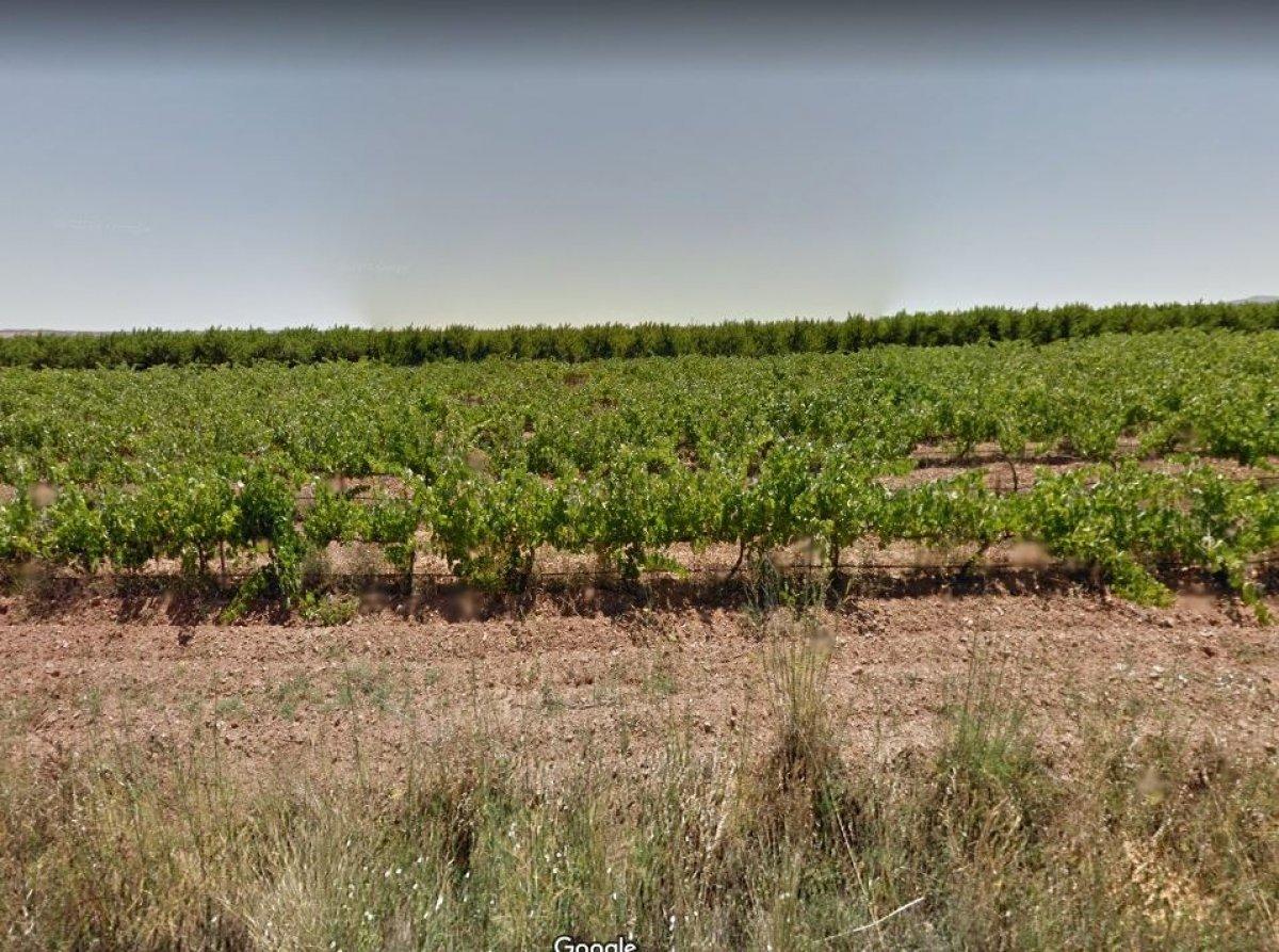 terreno-rural en alfamen · extrarradio 34500€