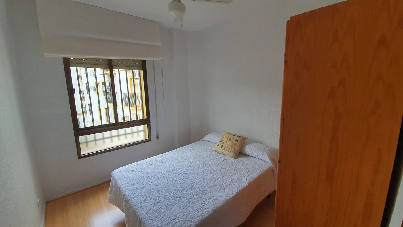 Confortable vivienda para entrar a vivir en zona avd. barcelona. - imagenInmueble8