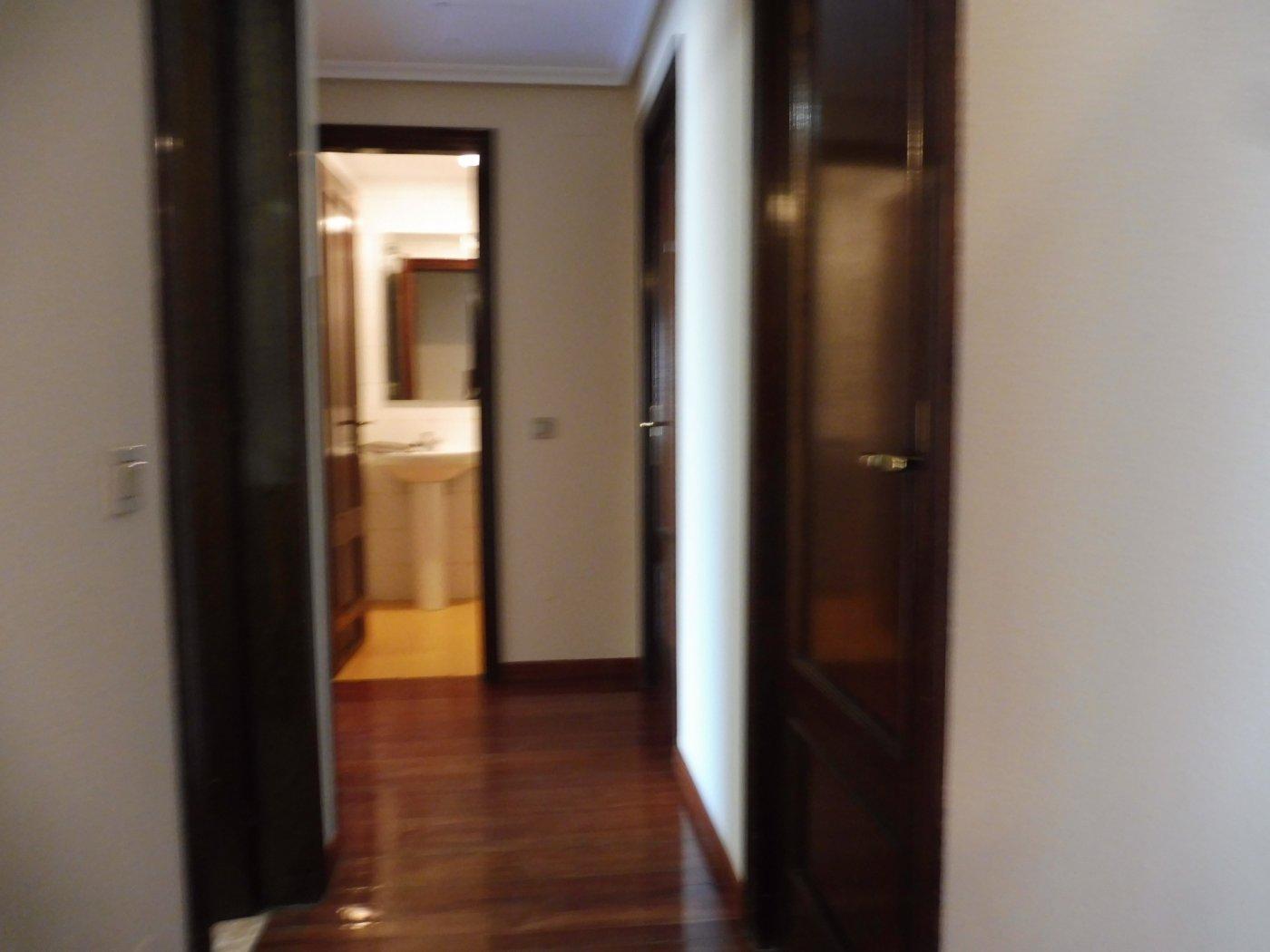 Amplio piso al lado del paseo de begoña - imagenInmueble11