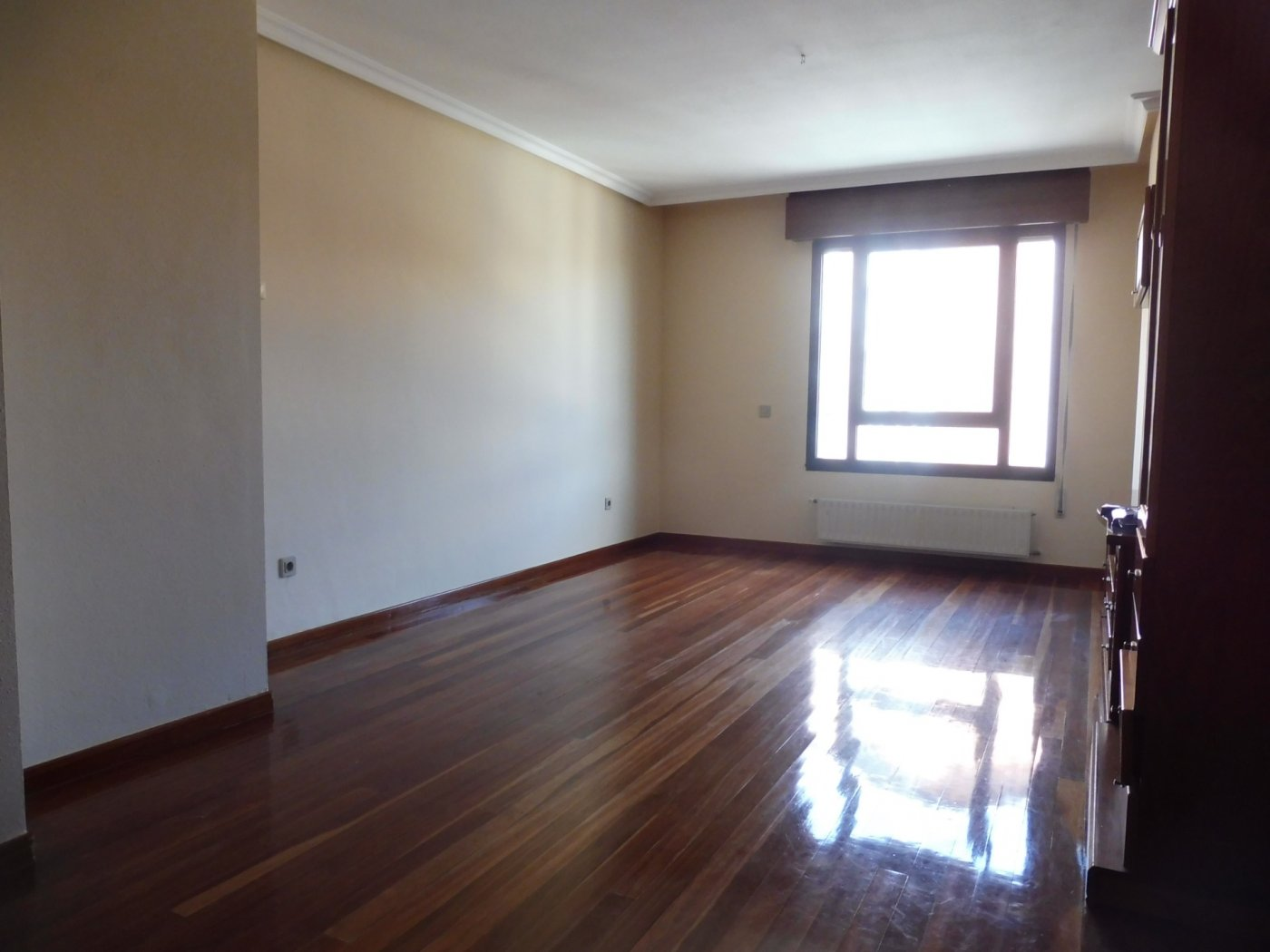 Amplio piso al lado del paseo de begoña - imagenInmueble14