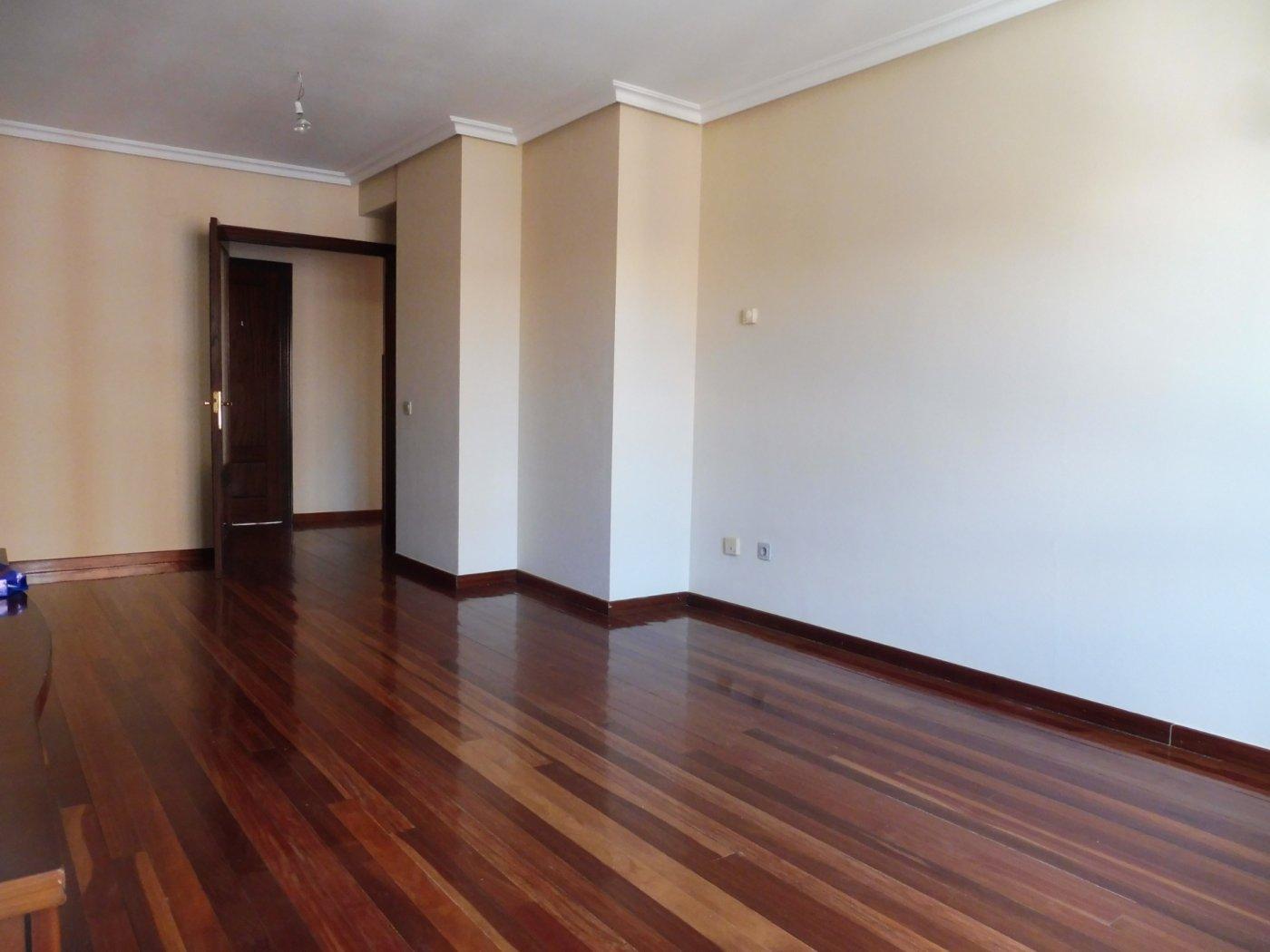 Amplio piso al lado del paseo de begoña - imagenInmueble15