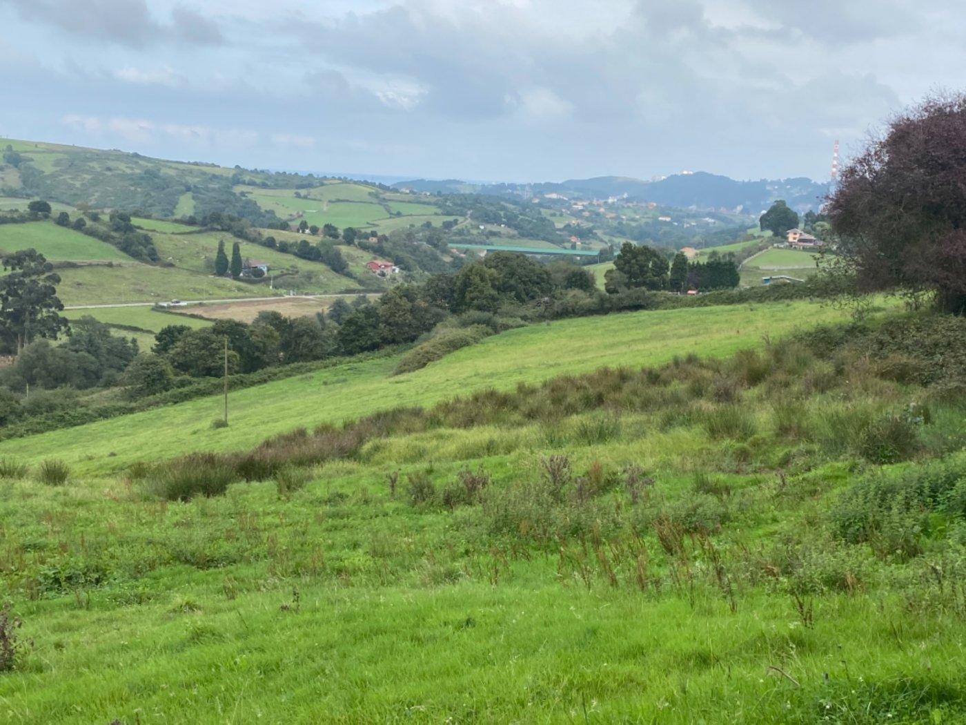 Rústica en el valle de carreño - imagenInmueble4
