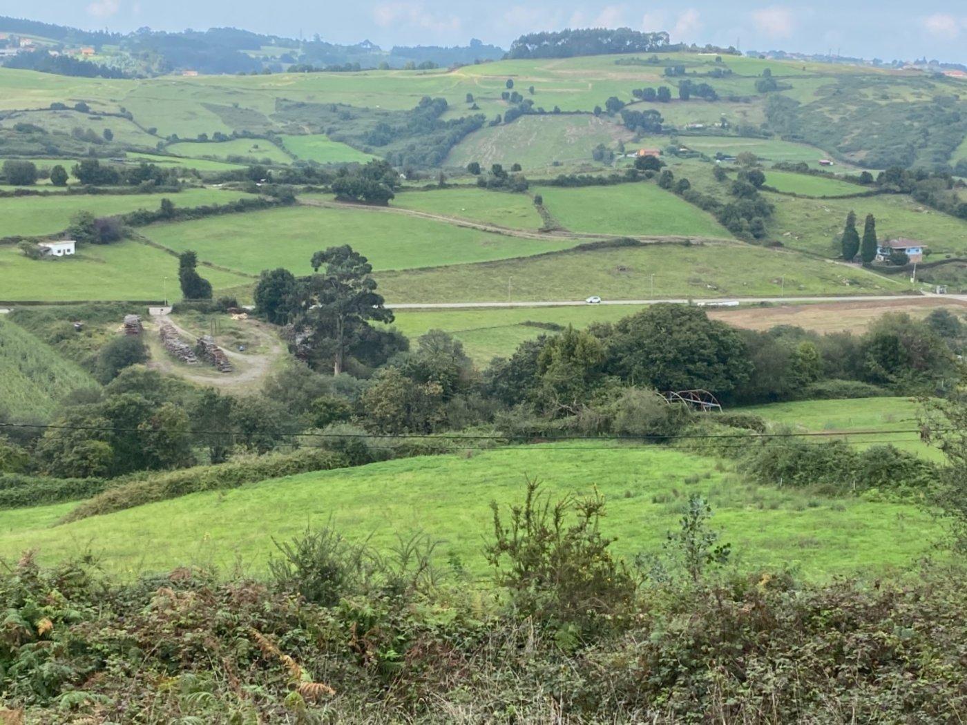 Rústica en el valle de carreño - imagenInmueble5