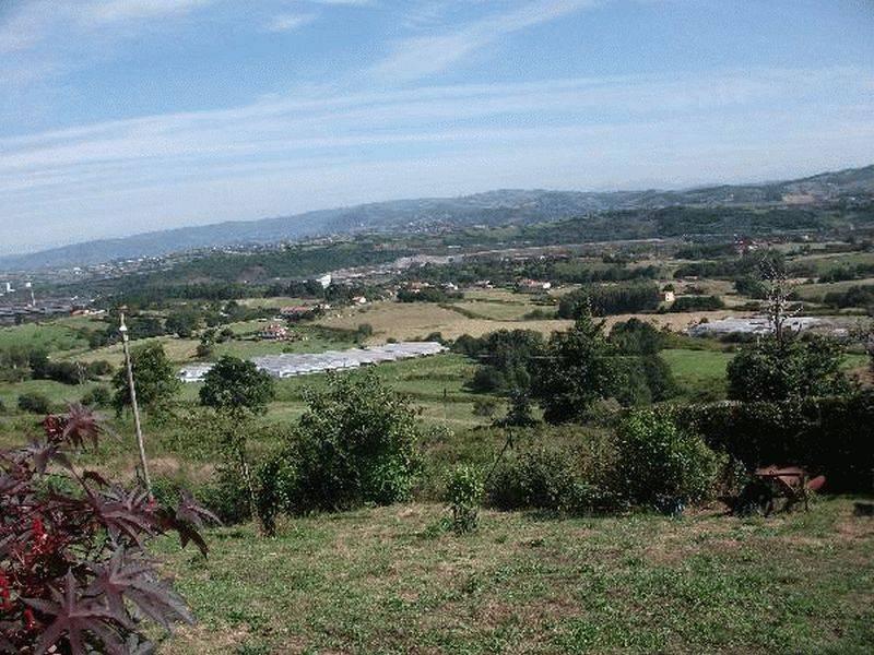 San andrés - imagenInmueble33