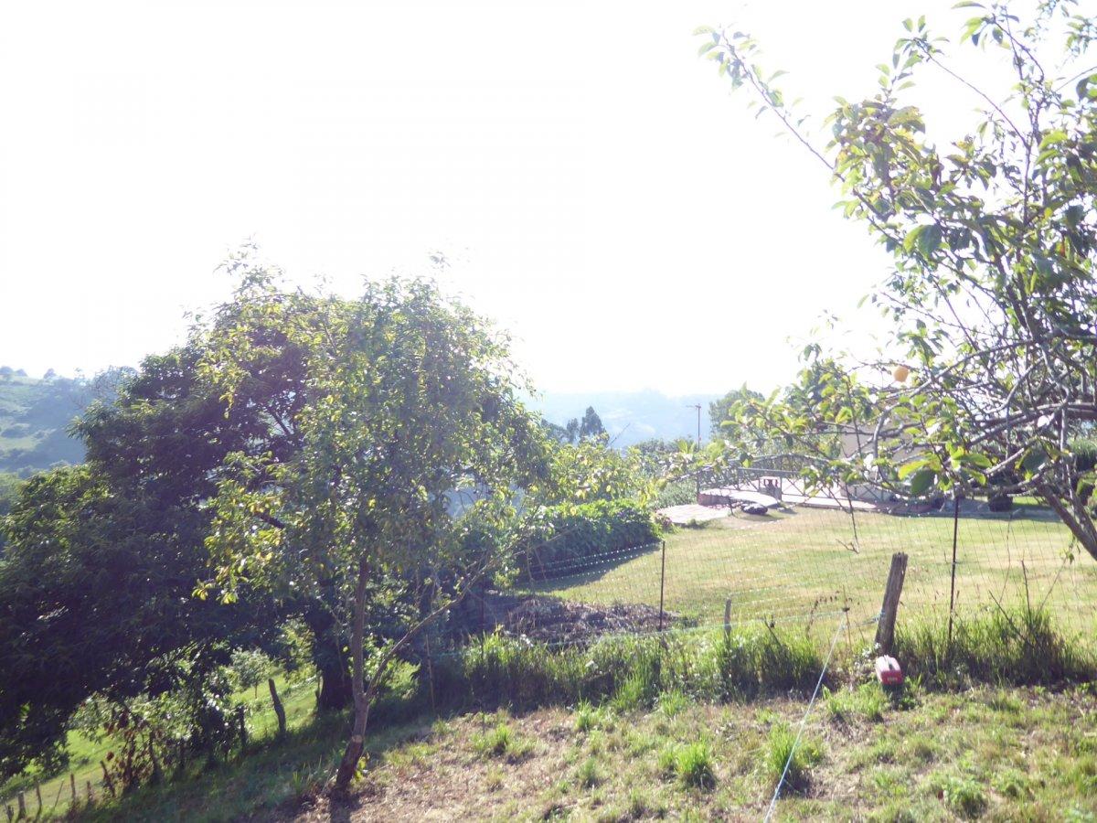 La pedrera-arroyo - imagenInmueble14