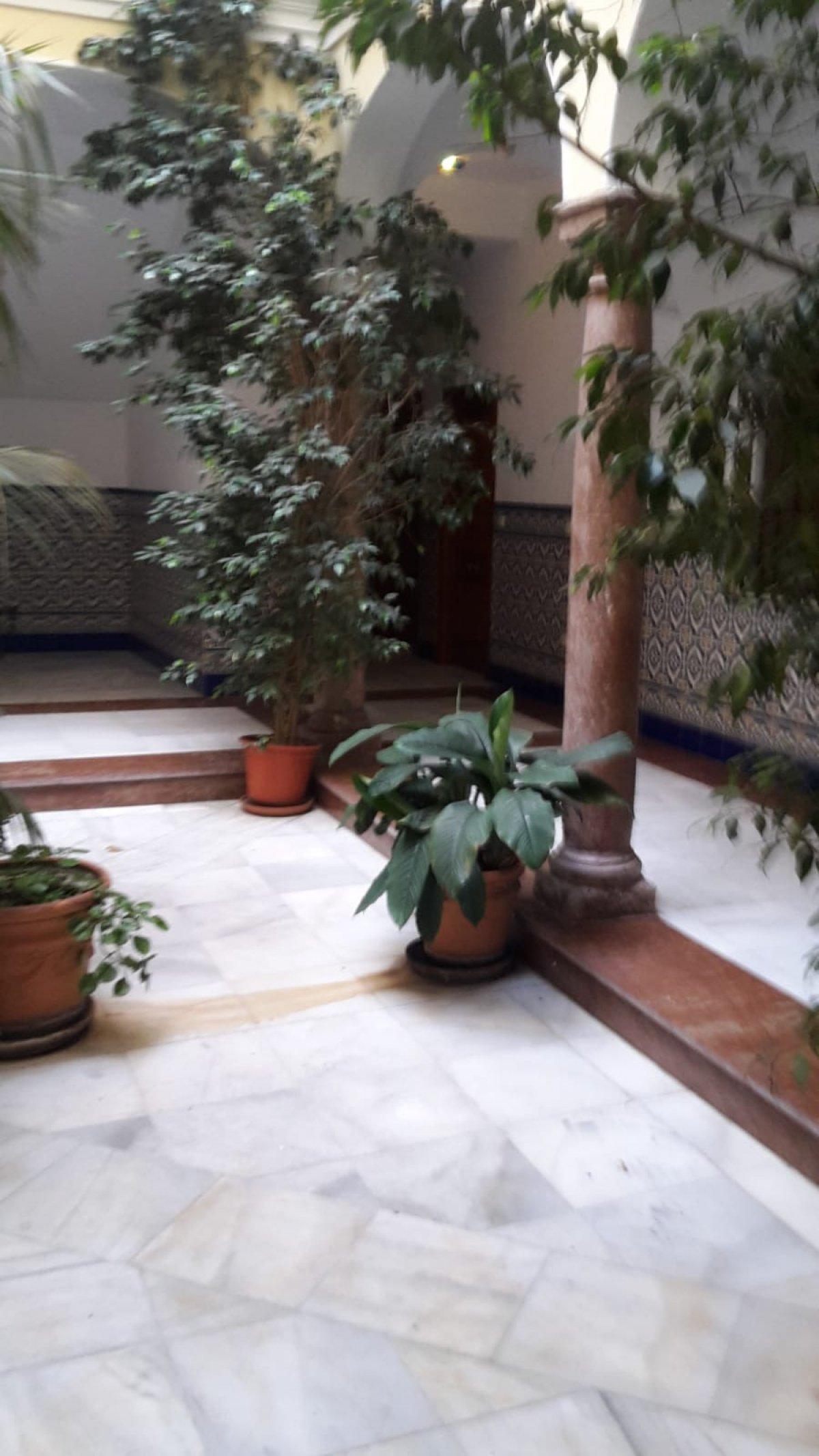 piso en antequera · centro 425€