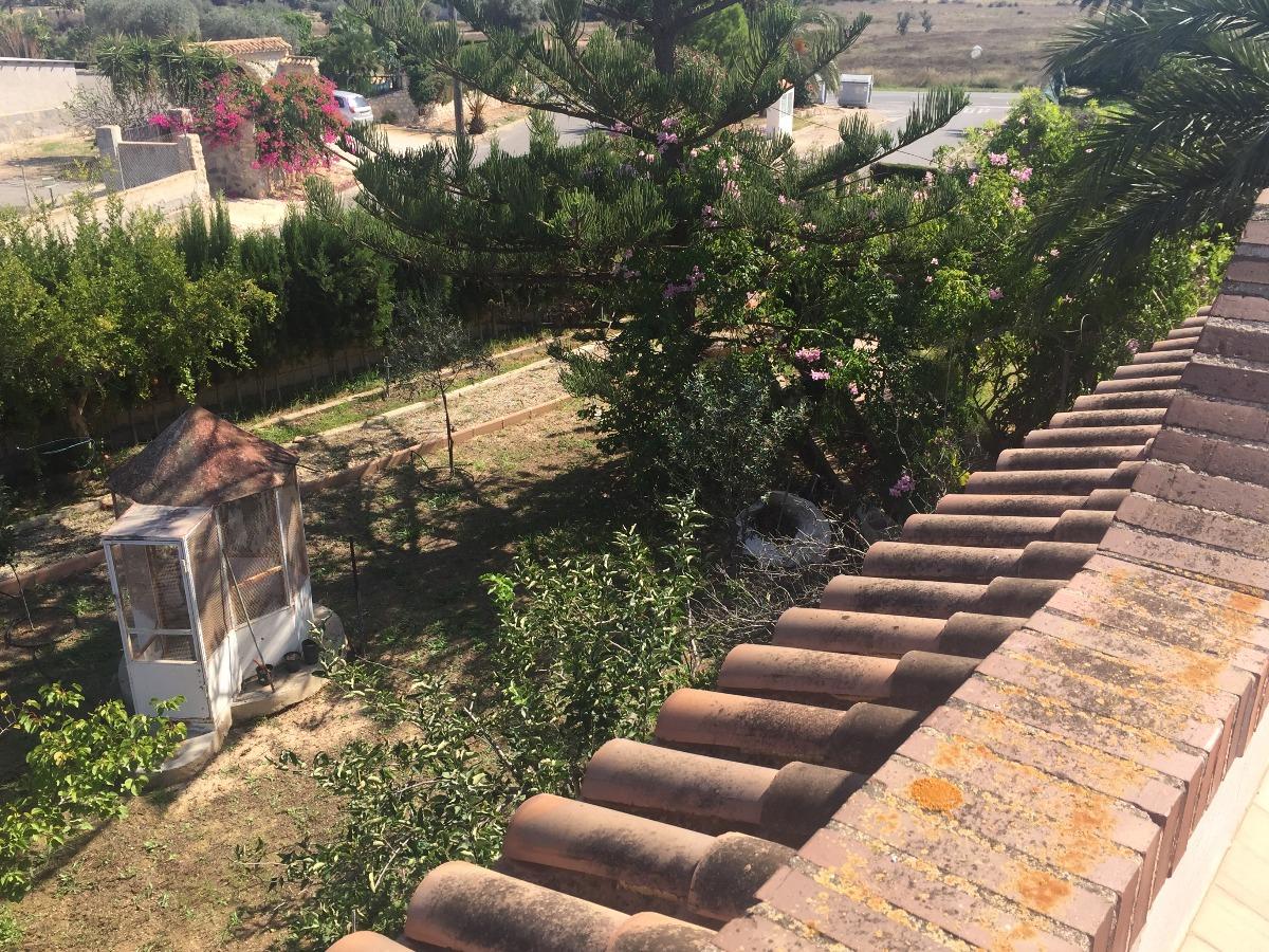 La mejor parcela de la urbanización Los Limoneros