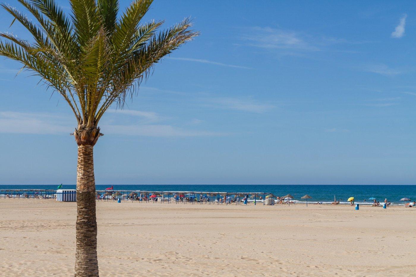 ¿quiere vivir en la playa de gandia todo el año o pasar largas estancias?  esta es la mejo - imagenInmueble28