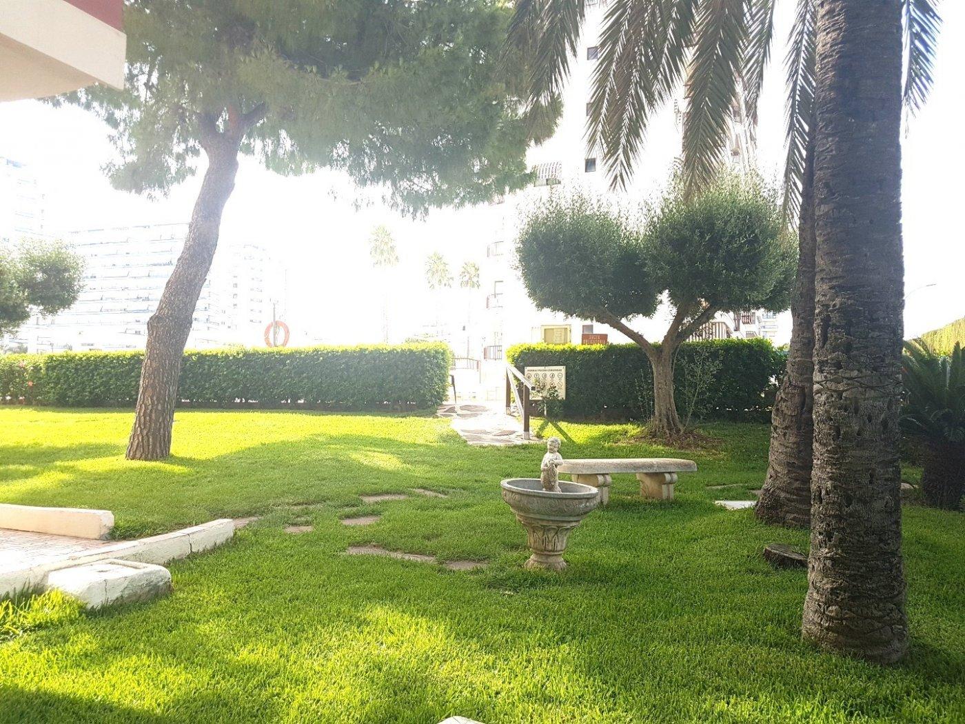 Apartamento en residencial tranquilo con parques, jardines, piscina comunitaria. - imagenInmueble15