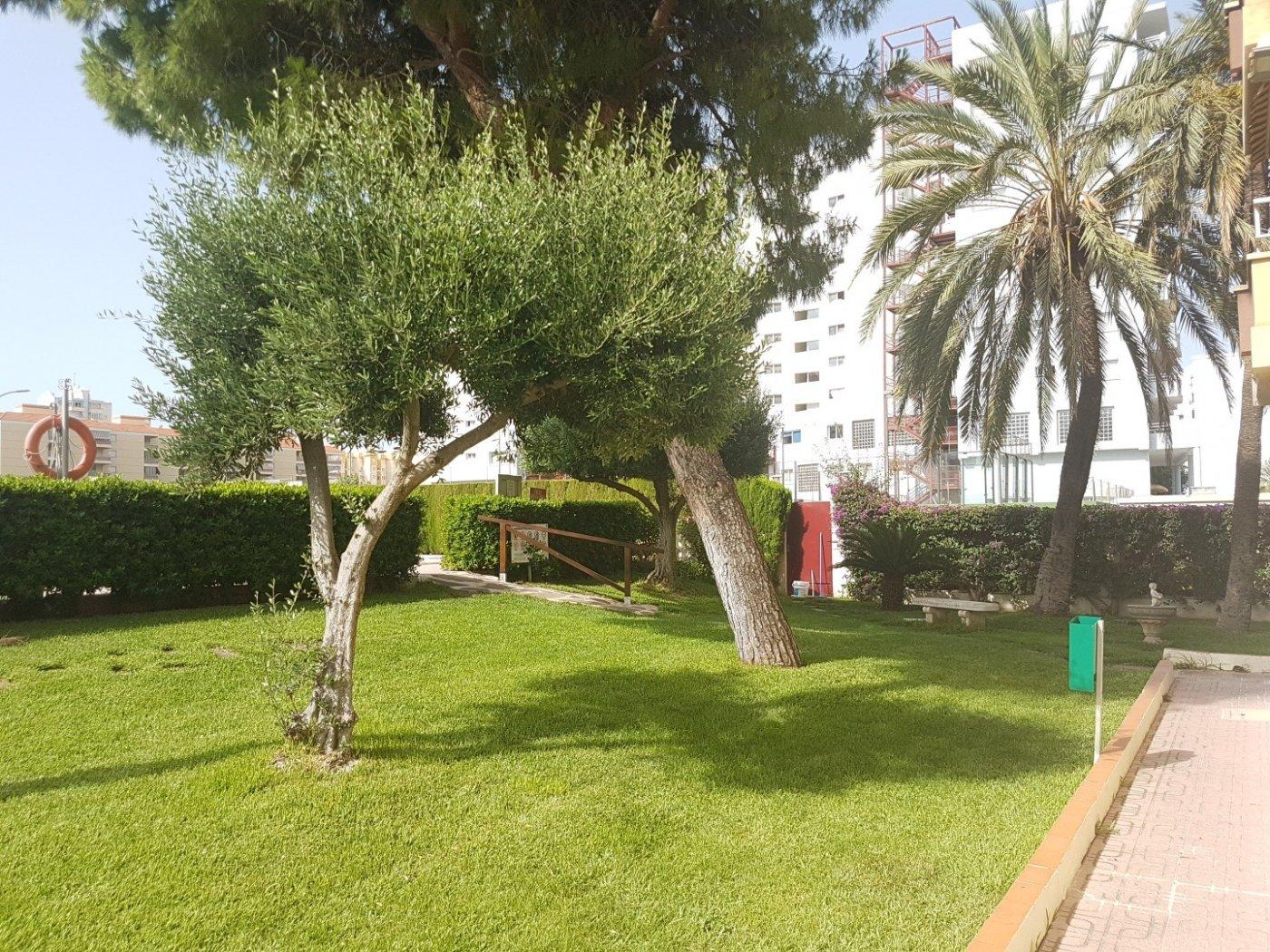 Apartamento en residencial tranquilo con parques, jardines, piscina comunitaria. - imagenInmueble24