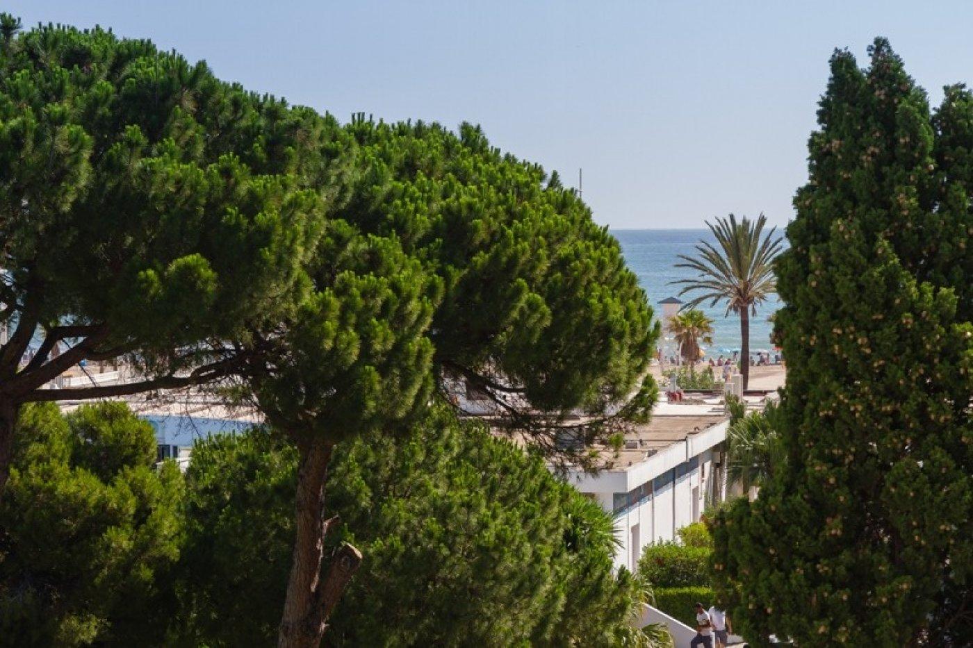 Disfruta de la playa de gandia a un paso de tu casa - imagenInmueble19