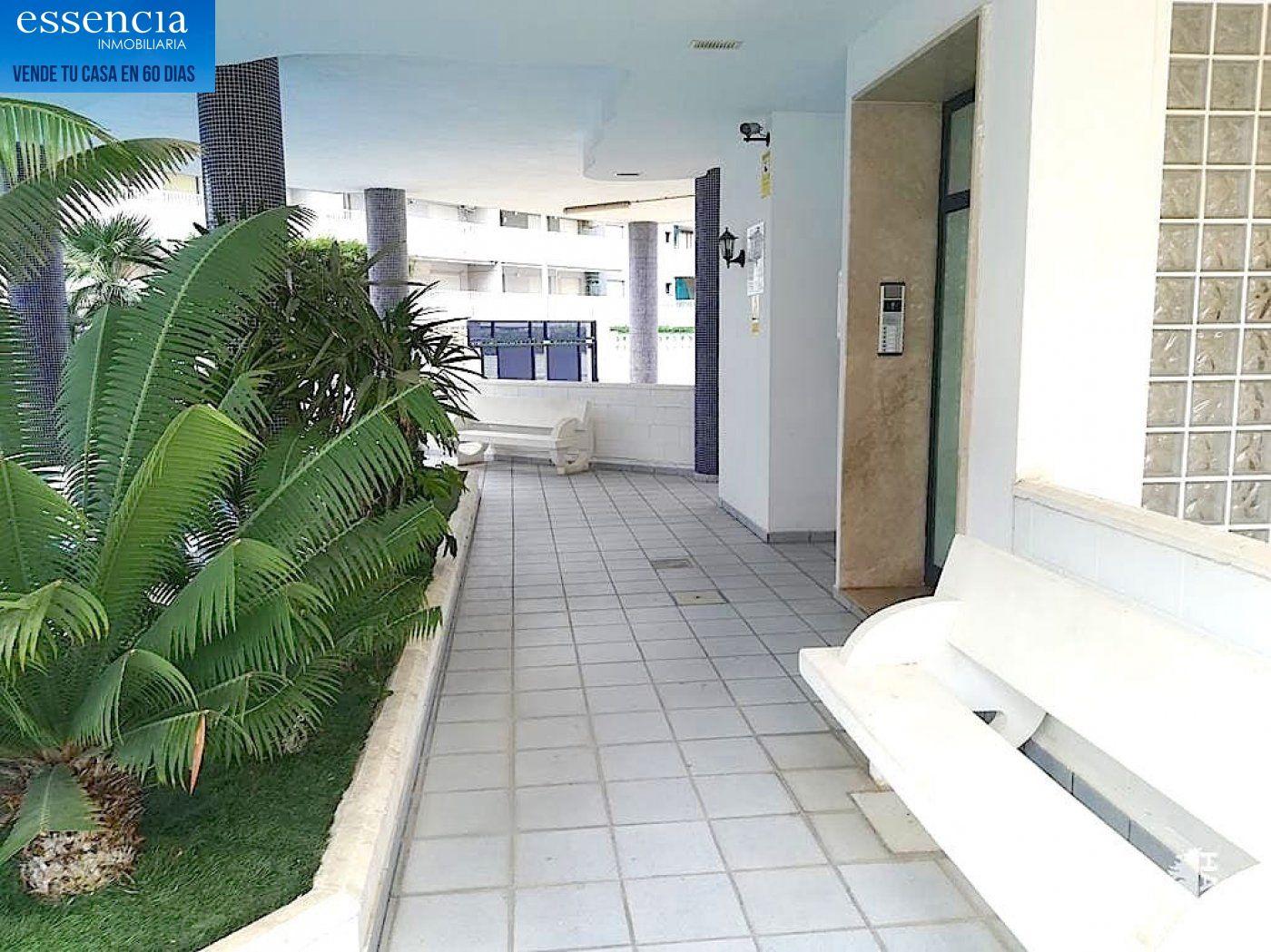 Apartamento de 2 dormitorios y 2 baños con salón con balcón. - imagenInmueble14