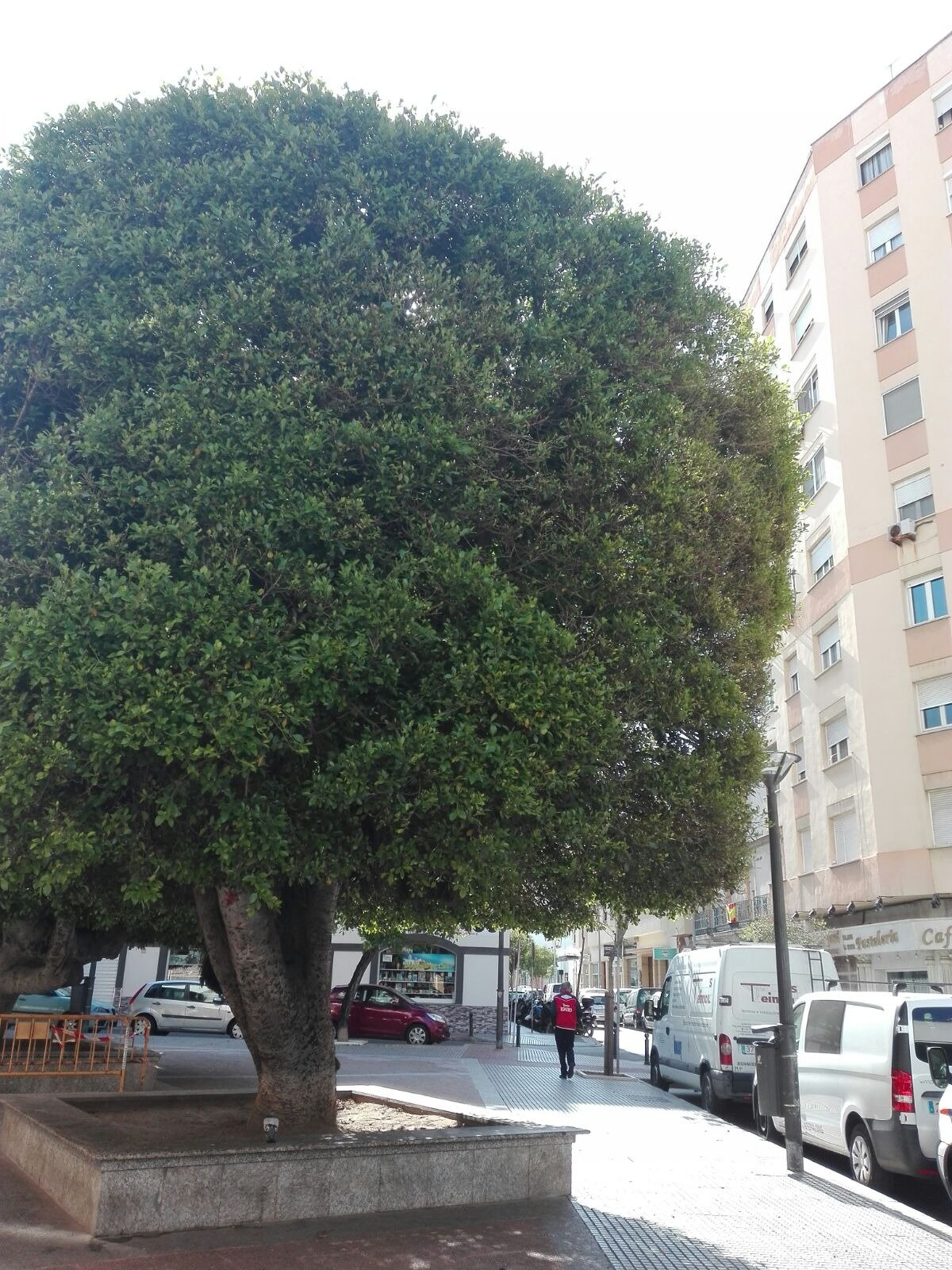 Plaza de parking en alquiler en Cádiz