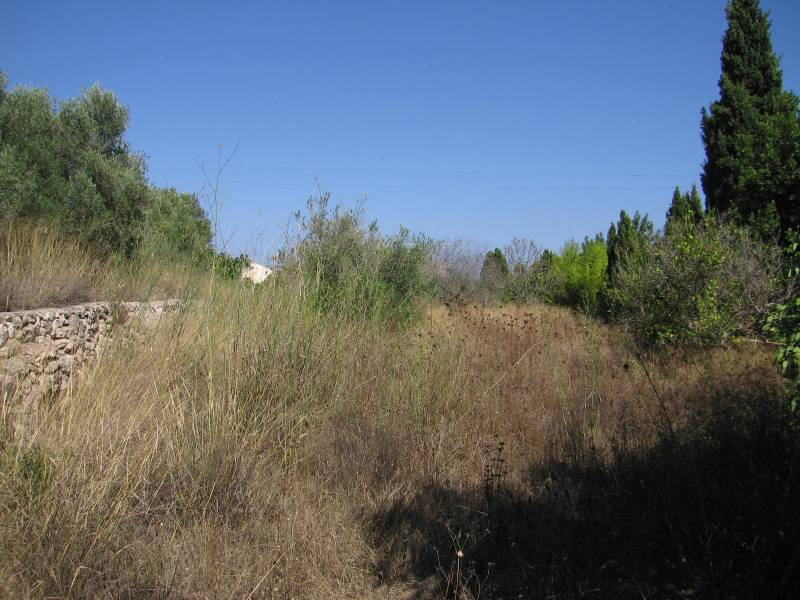 Plot · Jávea - Xàbia · Montgo – Castellans 165.000€