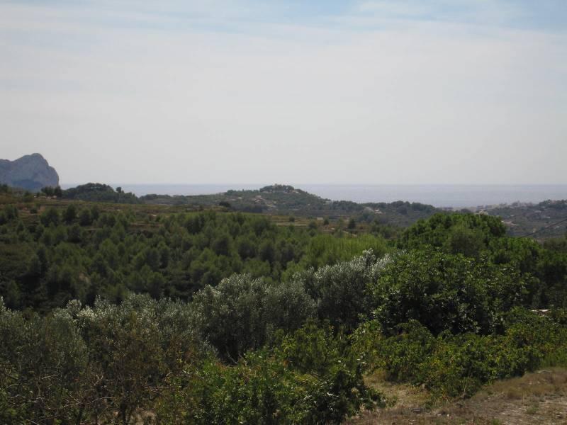 terrain en benissa · pueblo 116600€