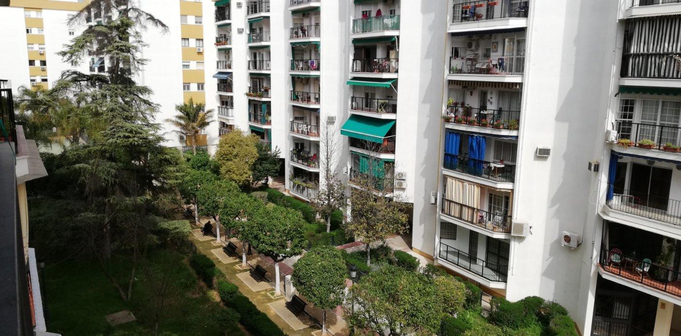 piso en sevilla · pages-del-corro-lopez-de-gomara 1100€