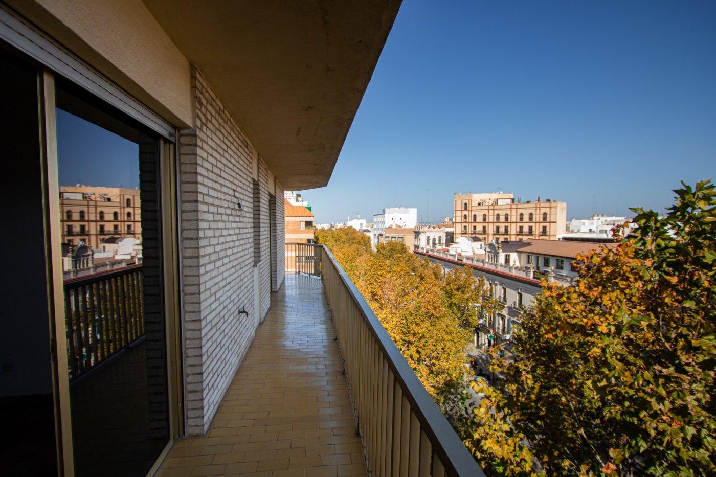 piso en sevilla · arenal---museo 650000€