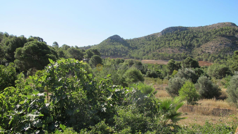 Masia en el desierto de las Palmas