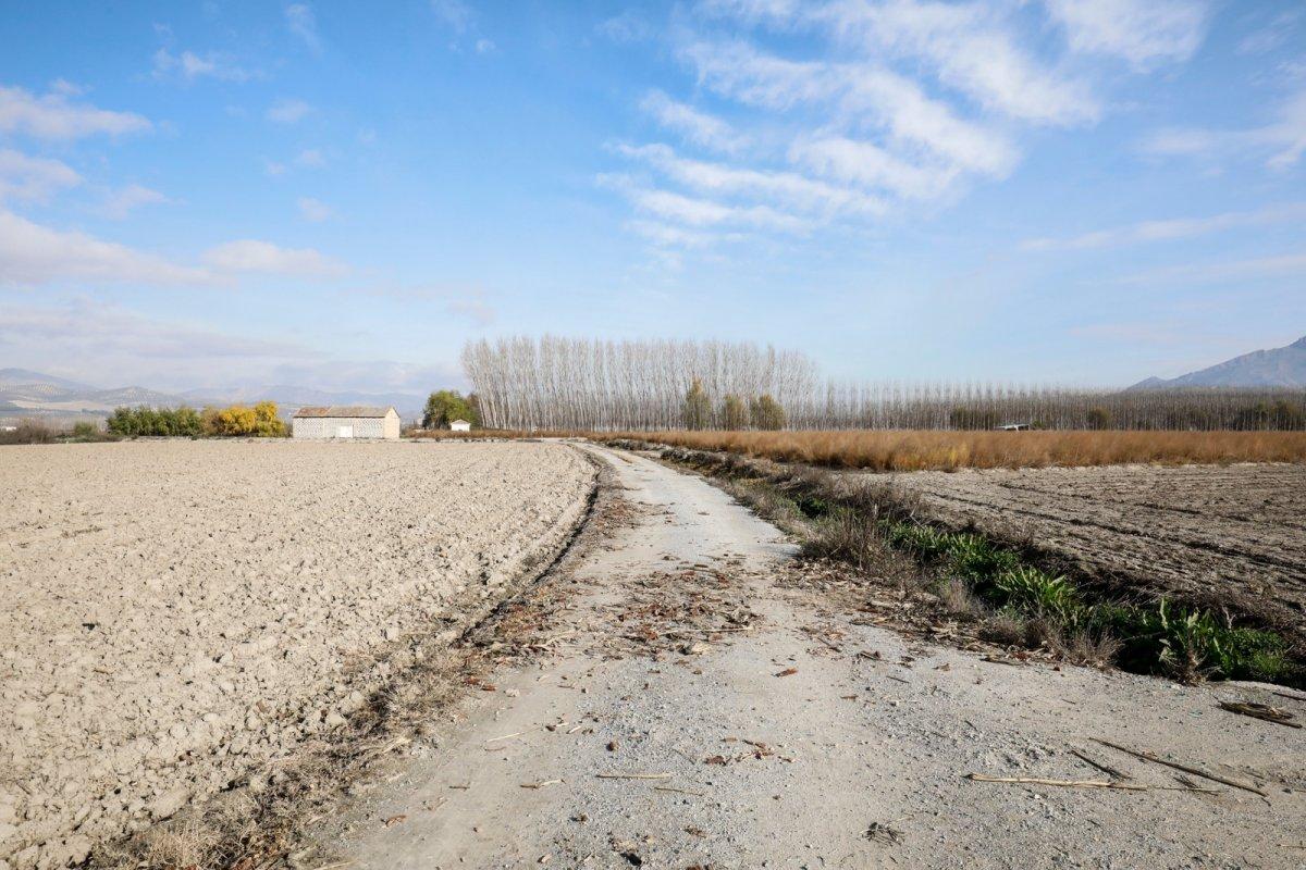 Pequeña parcela agraria en fuente vaquero