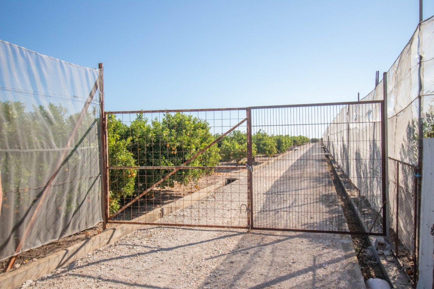 terreno-rural en llauri · llauri 35000€