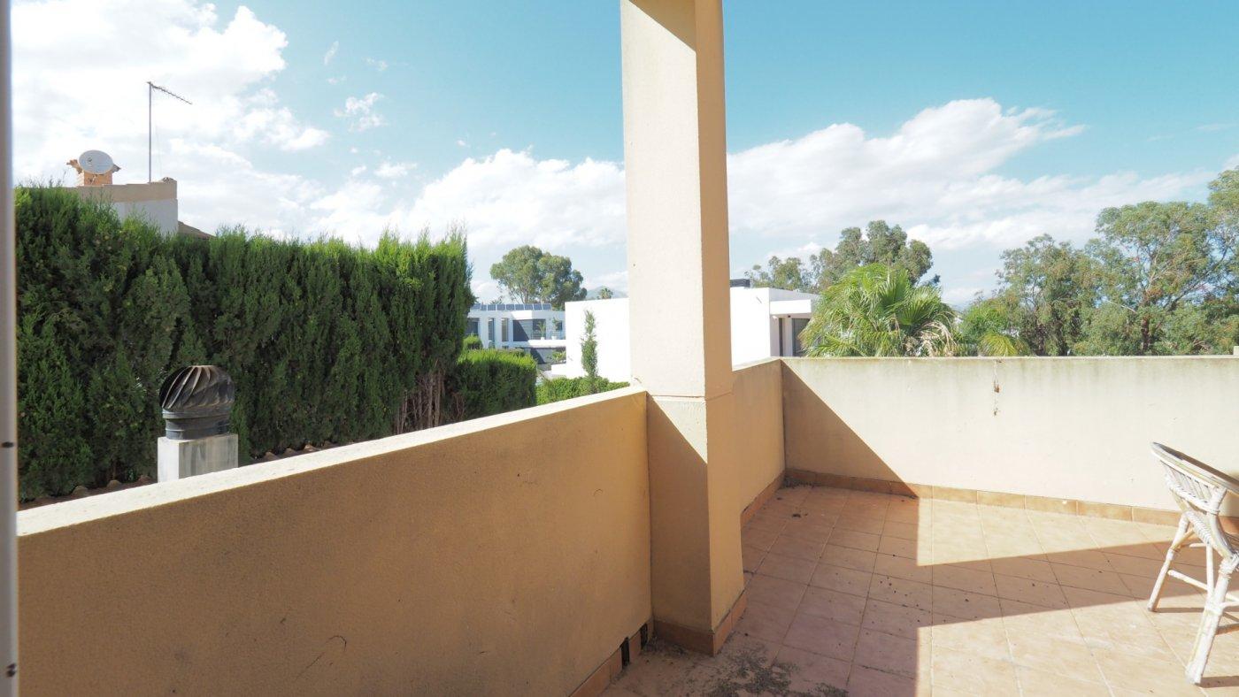 Fotogalería - 52 - Theme Panorama