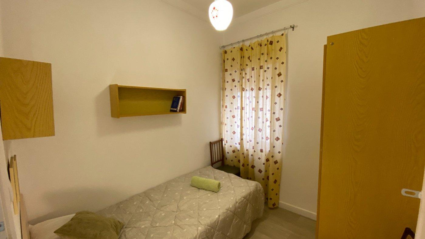 habitacion en alicante · campoamor 210€