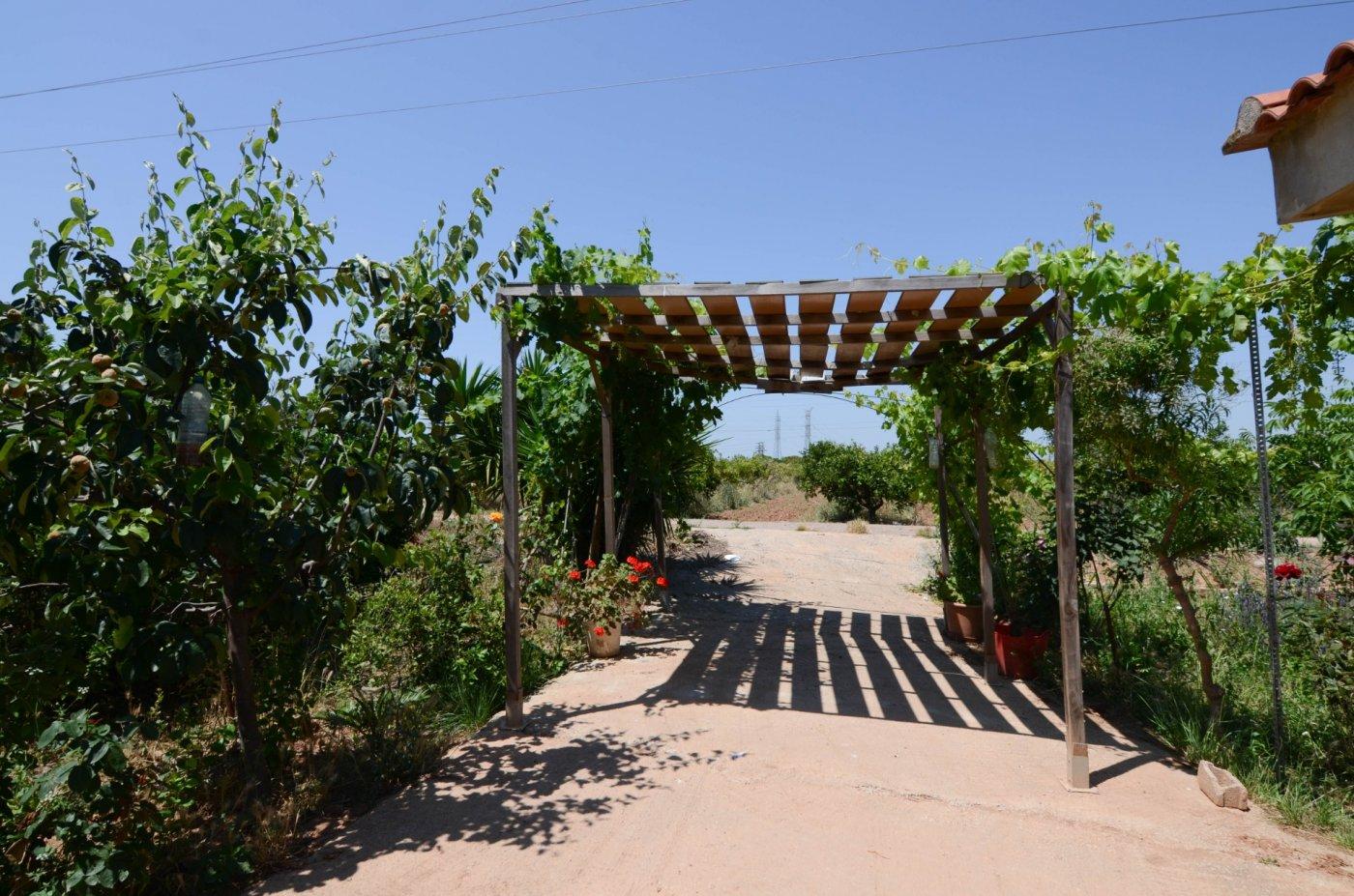 terreno-rural en picanya · picanya 55000€