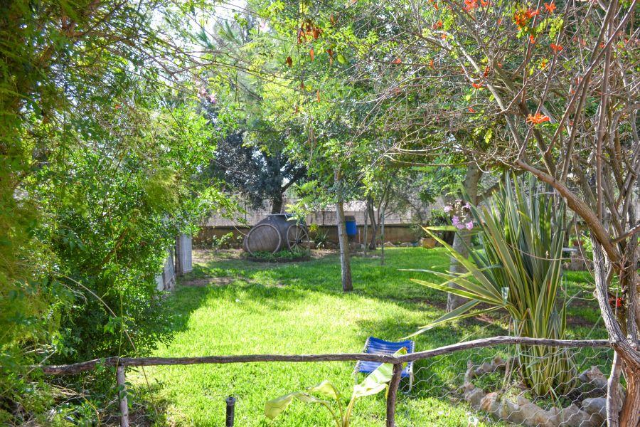 Casa en santa maria del cami con piscina !!! - imagenInmueble14