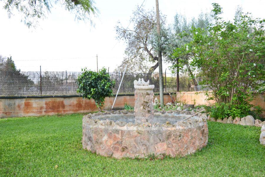 Casa en santa maria del cami con piscina !!! - imagenInmueble19