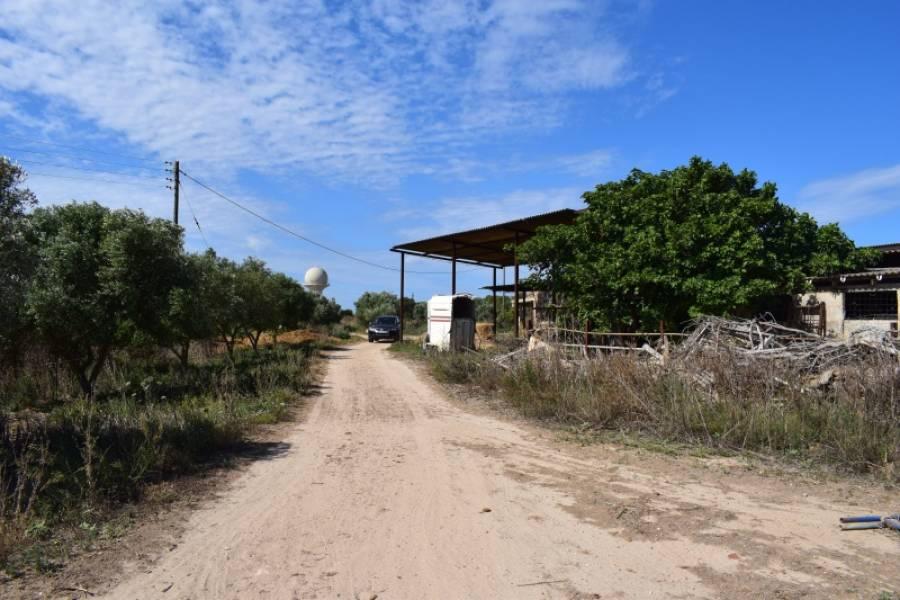 Casa de campo-Venta-Palma de Mallorca-185855-Foto-6