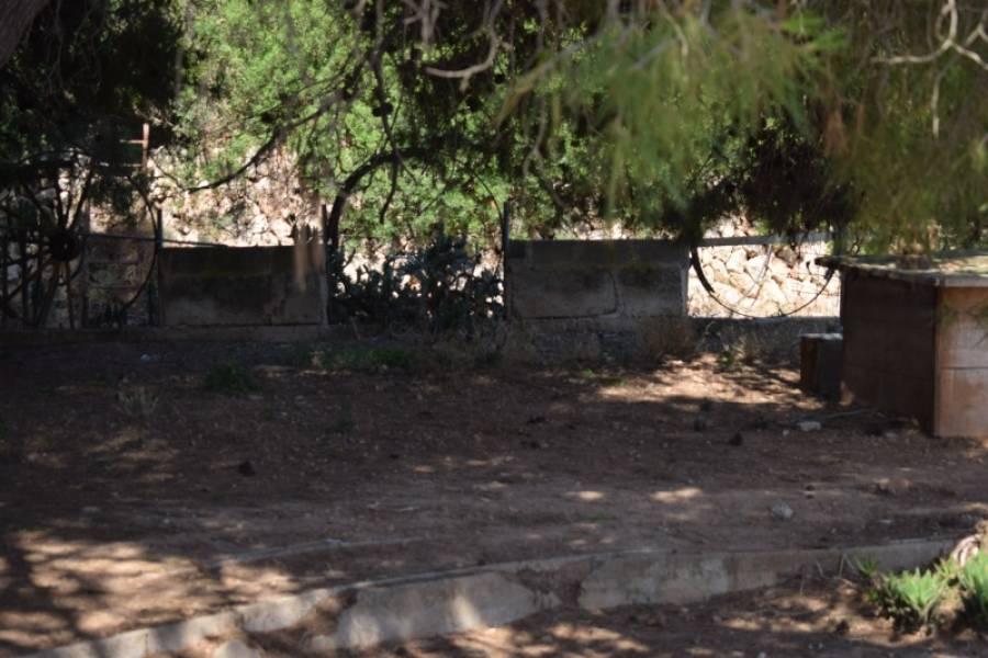 Casa de campo-Venta-Palma de Mallorca-185855-Foto-7