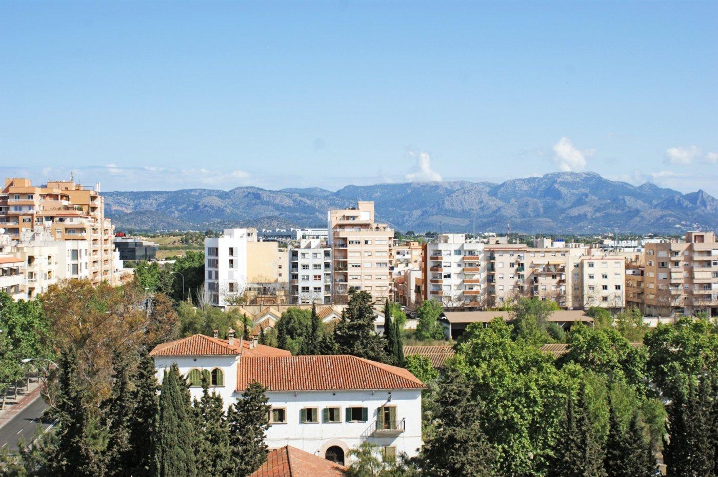 Piso-Venta-Palma de Mallorca-185552-Foto-2