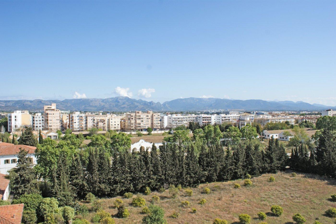 Piso-Venta-Palma de Mallorca-185552-Foto-52