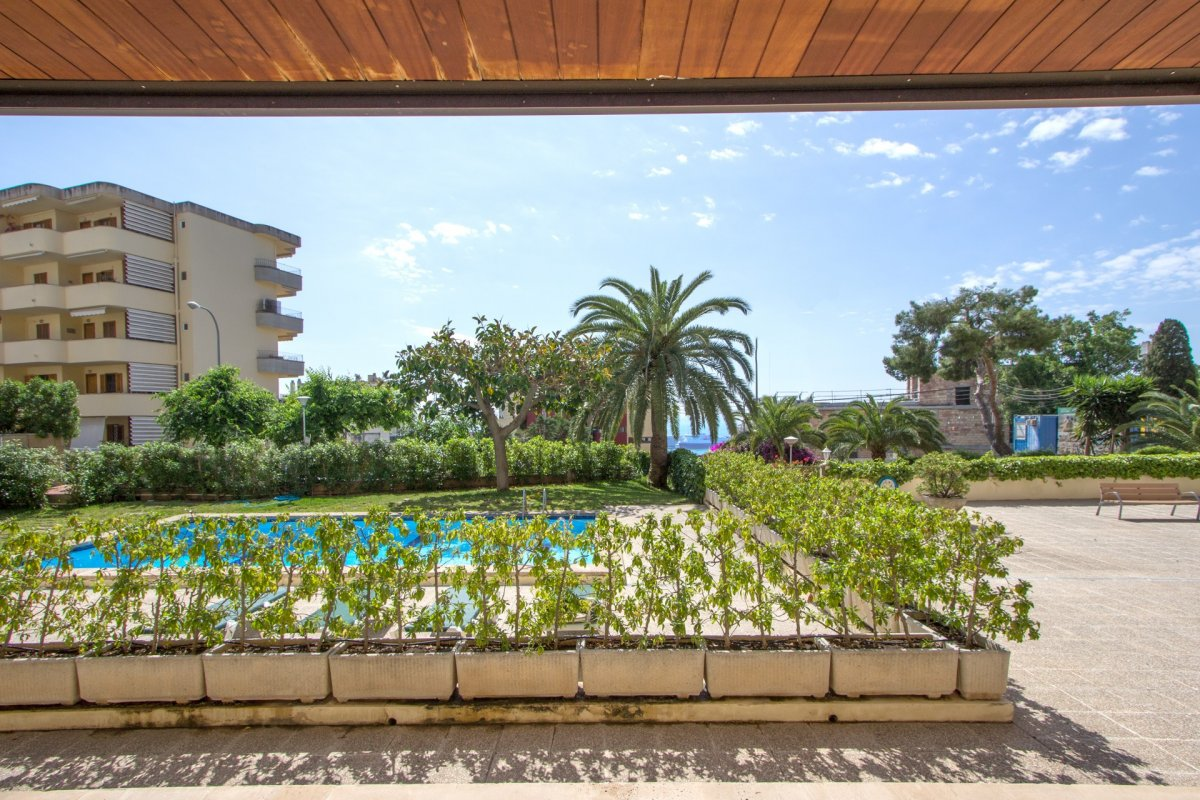 Planta baja-Venta-Palma de Mallorca-210488-Foto-4